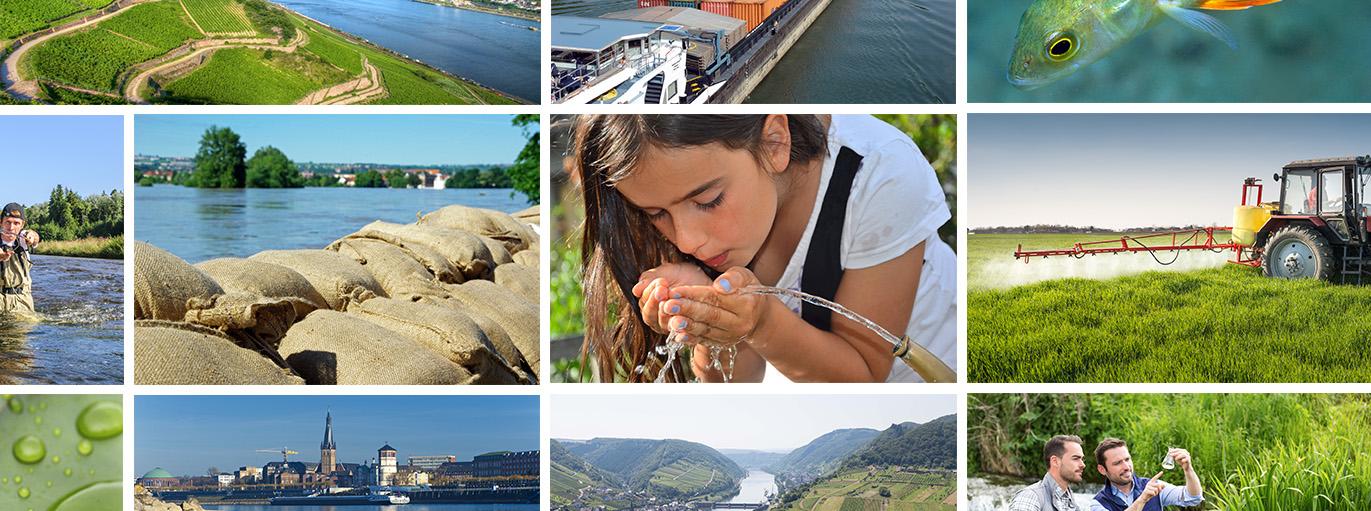 Wasser regional denken – neue Konzepte für die Praxis