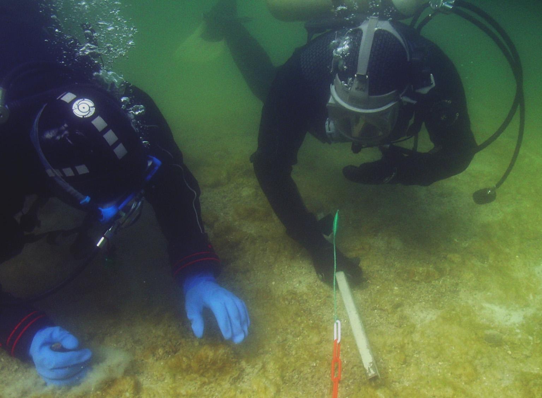 Monitoring von Unterwasserdenkmälern des UNESCO-Welterbes im Projekt HyMoBioStrategie, Foto: dr. M. Mainberger, UWARC